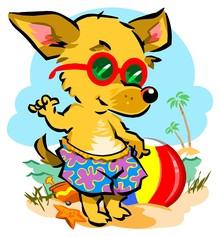 Kinderarztpraxis im Sommerurlaub!